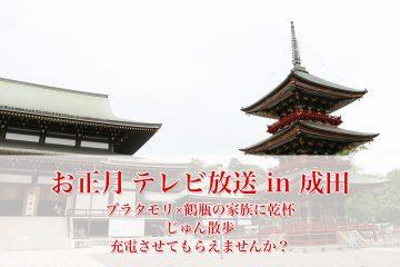 成田_テレビ_お正月